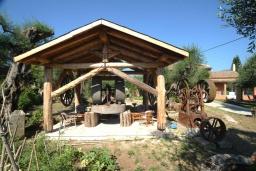 Территория. Греция, Дассия : Прекрасная вилла с бассейном и зеленой территорией, 4 спальни, 3 ванные комнаты, барбекю, парковка, Wi-Fi
