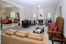 Гостиная. Греция, Дассия : Прекрасная вилла с бассейном и зеленой территорией, 4 спальни, 3 ванные комнаты, барбекю, парковка, Wi-Fi