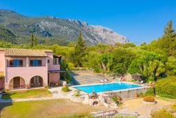Фасад дома. Греция, Барбати : Прекрасная вилла в 90 метрах от моря с бассейном и зеленым двориком с барбекю, 3 спальни, 4 ванные комнаты, парковка, Wi-Fi