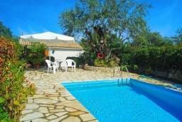 Бассейн. Греция, Кассиопи : Уютная вилла в 160 метрах от пляжа с бассейном, 2 спальни, парковка, Wi-Fi