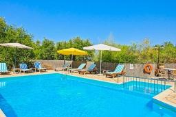 Бассейн. Греция, Каламаки : Прекрасная вилла с бассейном и зеленым двориком с барбекю, 4 спальни, 4 ванные комнаты, парковка, Wi-Fi