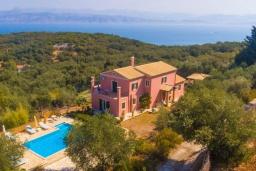 Фасад дома. Греция, Каламаки : Прекрасная вилла с бассейном и зеленым двориком с барбекю, 4 спальни, 4 ванные комнаты, парковка, Wi-Fi
