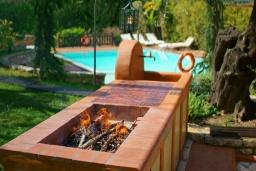 Территория. Греция, Карниарис : Уютная вилла с бассейном и видом на море, 6 спален, 4 ванные комнаты, барбекю, парковка, Wi-Fi