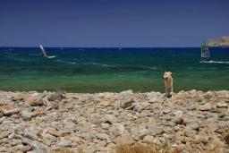 Пляж Пападиокамбос (Фанеромени) в Айос Николасе