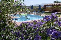 Бассейн. Греция, Айя Марина : Роскошная вилла с бассейном и зеленым двориком с барбекю, 5 спален, 4 ванные комнаты, джакузи, парковка, Wi-Fi