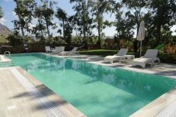 Бассейн. Греция, Гувес : Роскошная вилла с большим бассейном и зеленым двориком с барбекю, 4 спальни, 3 ванные комнаты, детская площадка, парковка, Wi-Fi