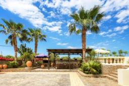 Территория. Греция, Сиси : Роскошная вилла с бассейном и зеленым двориком, 6 спален, 2 ванные комнаты, барбекю, парковка, Wi-Fi