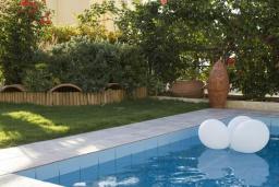 Бассейн. Греция, Аделе : Уютная вилла с бассейном и зеленым двориком, 3 спальни, 3 ванные комнаты, парковка, Wi-Fi