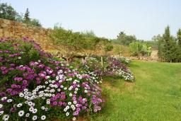 Территория. Греция, Ханья : Роскошная современная вилла с 7-ю спальнями, с большим бассейном, и зелёным садом с фруктами и овощами, с виноградником, барбекю, дровяной печью и патио