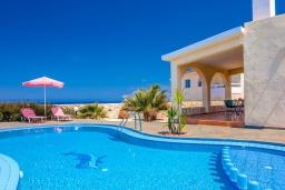 Бассейн. Греция, Ханья : Уютная вилла с шикарным видом на море, с 3 спальнями, с бассейном, с тенистой террасой и барбекю