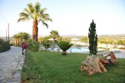 Территория. Греция, Скалета : Шикарная вилла с 6-ю спальнями, бассейном, зелёной территорией, детской площадкой, баскетбольной площадкой, патио и барбекю