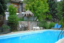 Бассейн. Греция, Иерапетра : Уютная каменная вилла с 2-мя спальнями, с бассейном и зелёным двориком с патио и барбекю