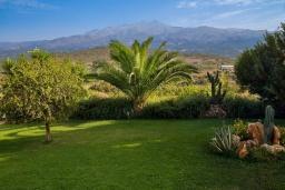 Территория. Греция, Панормо : Уютная вилла с бассейном и зеленым двориком с барбекю, 1 спальня, парковка, Wi-Fi