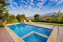 Бассейн. Греция, Панормо : Уютная вилла с бассейном и зеленым двориком с барбекю, 1 спальня, парковка, Wi-Fi