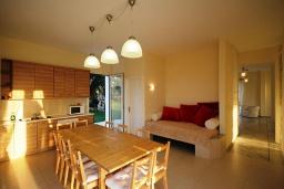 Кухня. Греция, Ретимно : Роскошная вилла с бассейном и зеленым двориком с барбекю, 5 спален, 2 ванные комнаты, парковка, Wi-Fi
