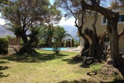 Территория. Греция, Ретимно : Роскошная вилла с бассейном и зеленым двориком с барбекю, 5 спален, 2 ванные комнаты, парковка, Wi-Fi